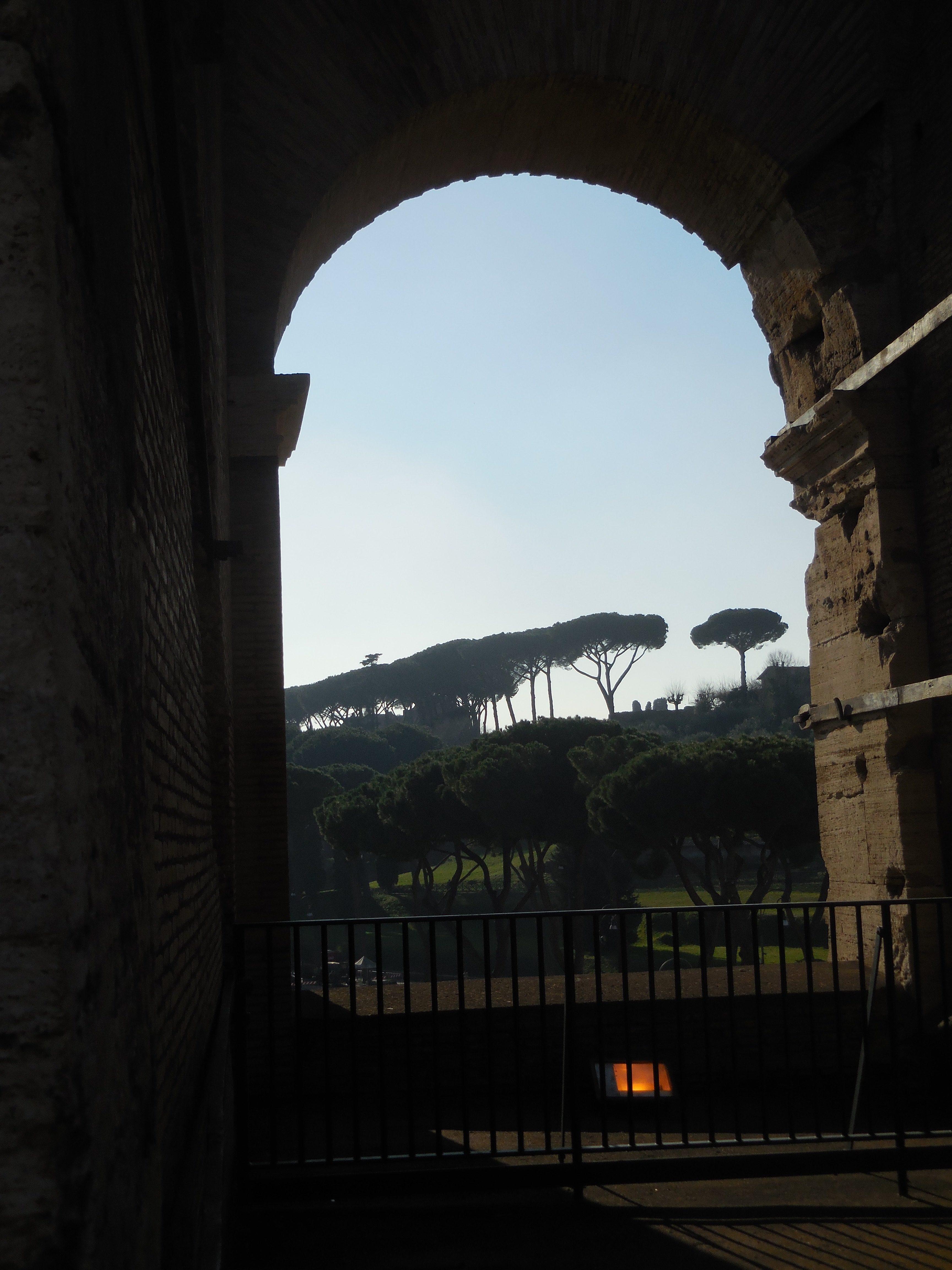Colosseum 5.jpg