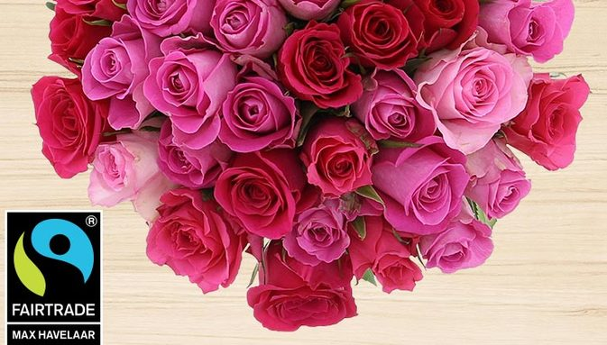 40-roses-en-camaieu-rose-750-11789.jpg